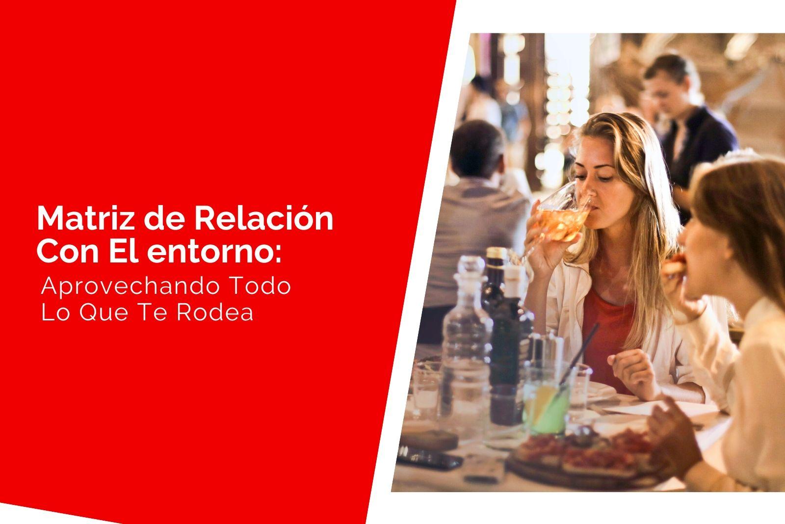 Héctor Jimenez - Qué es la Matriz de 6 campos - Relación con el entorno 1